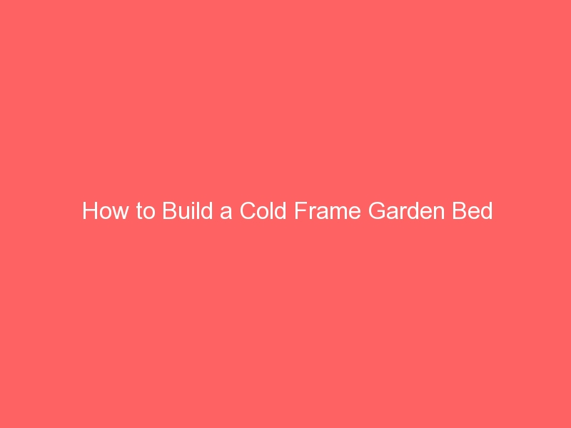 How to Build a Cold Frame Garden Bed